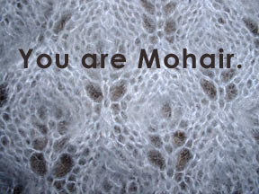 You are Mohair